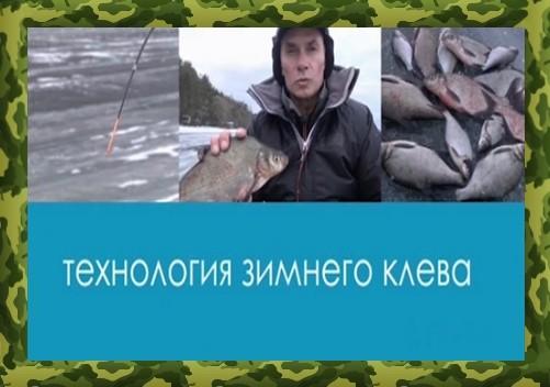 евгений середа ловля на фидер