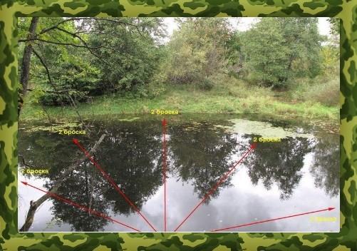 методика ловли щуки с берега на реке