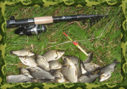 Снасти для ловли карася на поплавочную удочку
