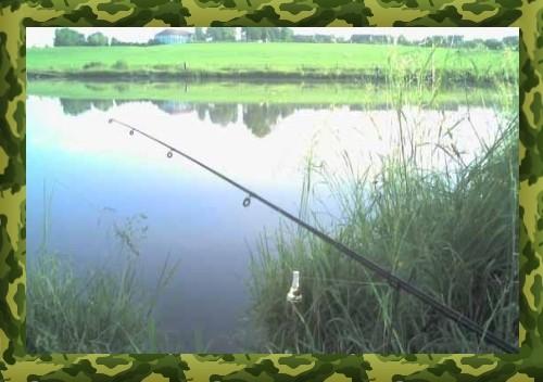 Оснастка донки для ловли карася в прудах