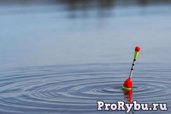 Правильная поплавочная снасть для ловли карася