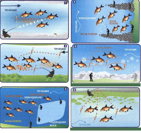 Ловля леща в равнинной реке