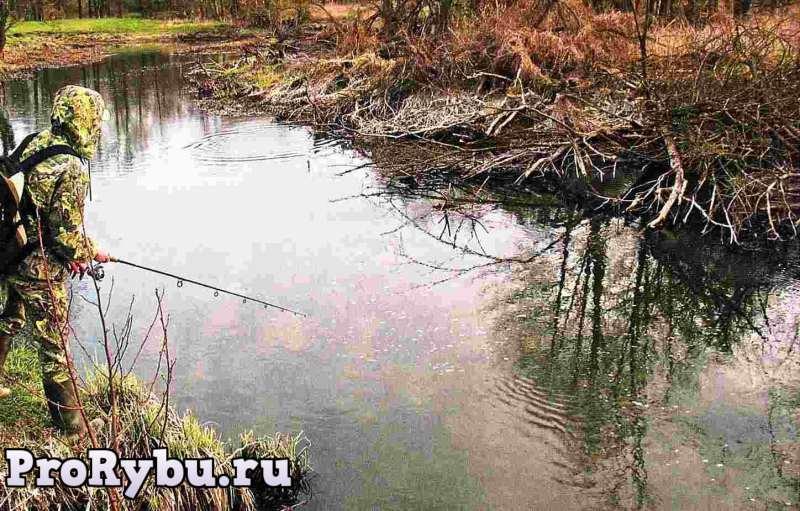 Ловля хариуса на малых реках