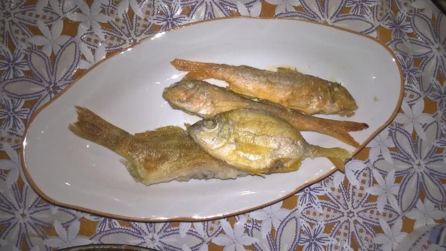 Ловля рыбы в Чёрном море (Туапсе)