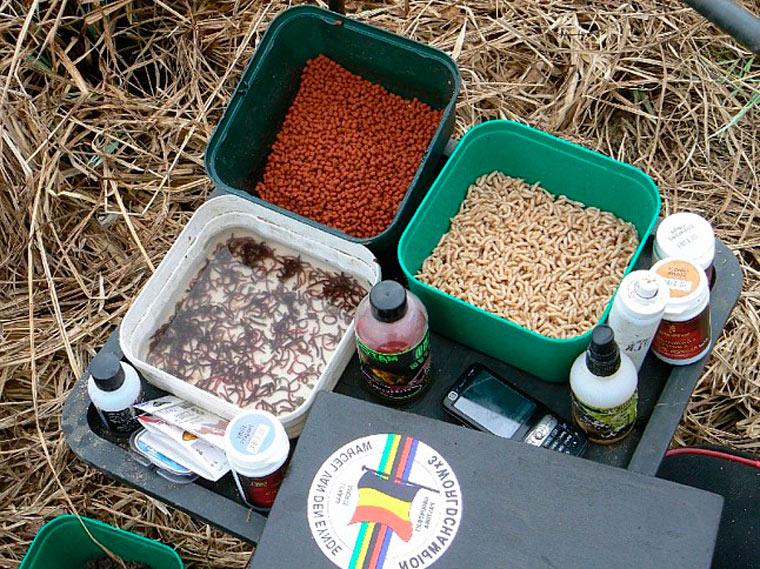 Домашняя прикормка для ловли плотвы своими руками рецепт
