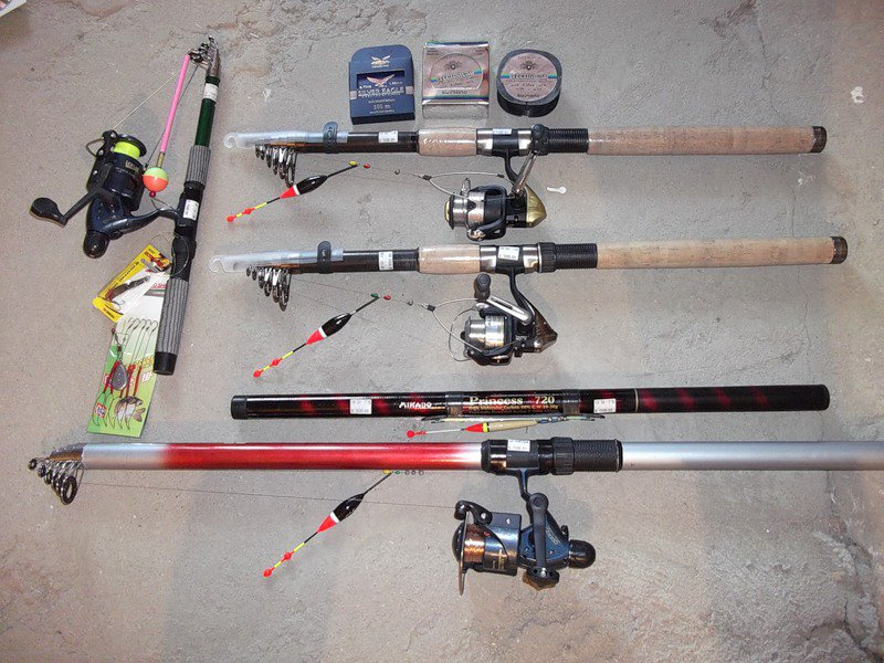 Как выбрать удочку для начинающих рыбаков