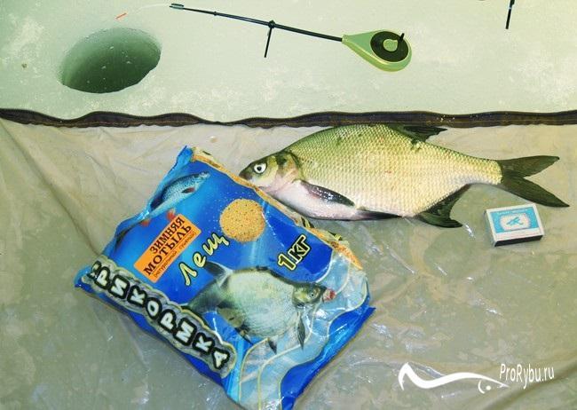 Ловля леща зимой на поплавок и мормышку, выбор прикормки, наживки и снастей Про рыбалку - секреты рыбной ловли