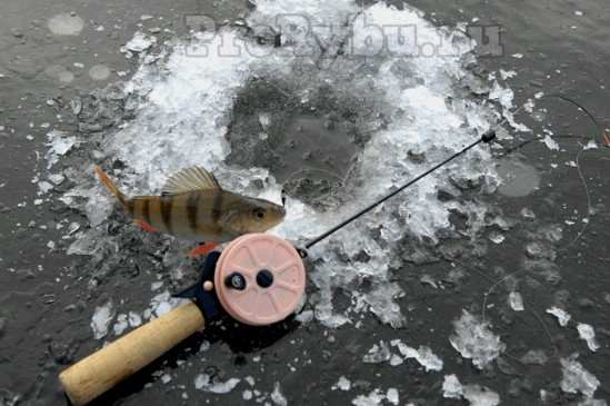 Зимняя удочка для ловли на мормышку
