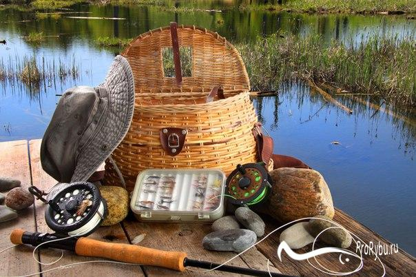 Снасти для весенней рыбалки на плотву