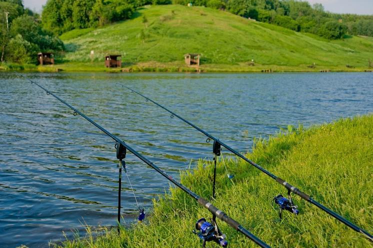 Бесплатные водоёмы для рыбалки в Подмосковье