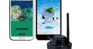 Обзор камеры Lucky FF 3309 Wi-Fi NEW