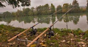 Ловля фидером весной на реке