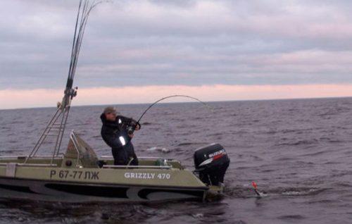 рыбалка троллинг
