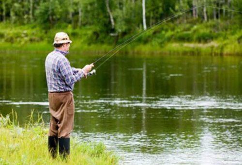 Наживка для речной рыбы