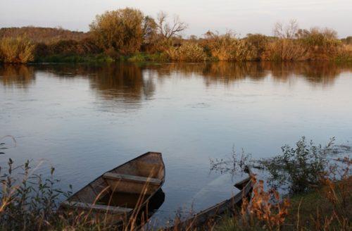 рыбалка на Воронеже