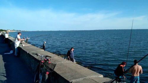 рыбалка в Бердянске