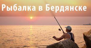 фото рыбалка в Бердянске