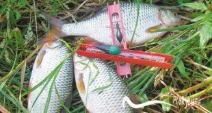 Поплавочная удочка для ловли плотвы