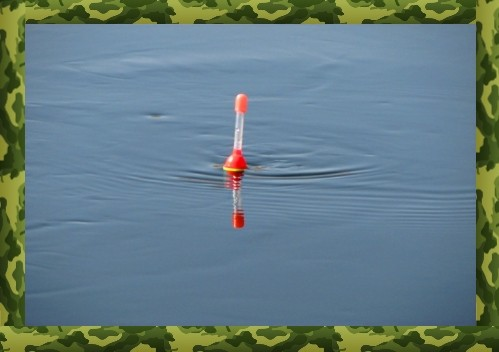 ловля карася на поплавок