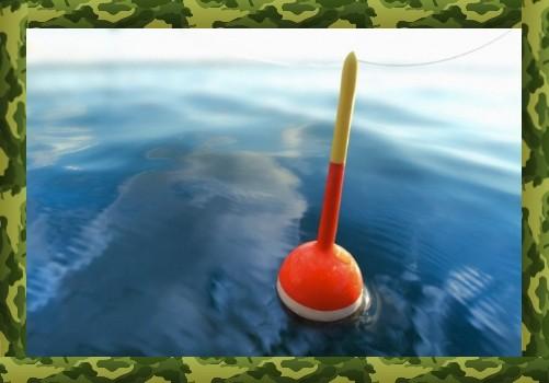 Прикормка для ловли карася на поплавок