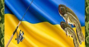 Ловля сома в Украине
