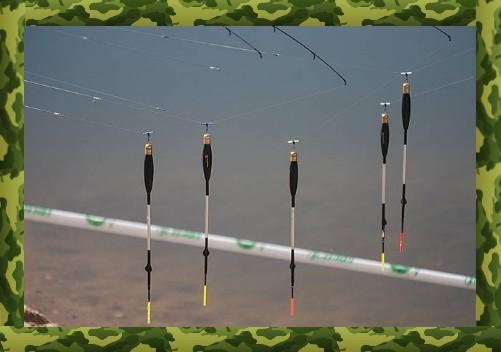 Лучшие донные и поплавочные снасти для ловли карася