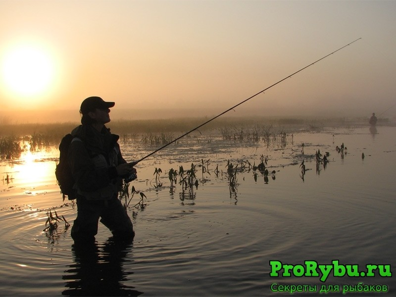 Как ловить рыбу на спиннинг