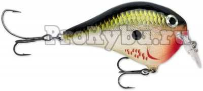Rapala DT Fat Sure Set