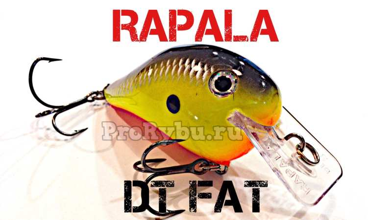 Rapala Dives -To Fat