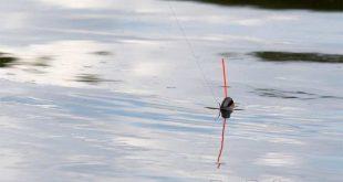 Ловля в проводку на течении