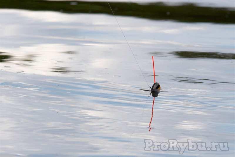 Снасти для ловли в проводку на течении
