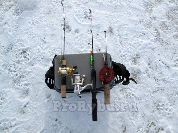 Как выбрать удочки для зимней рыбалки