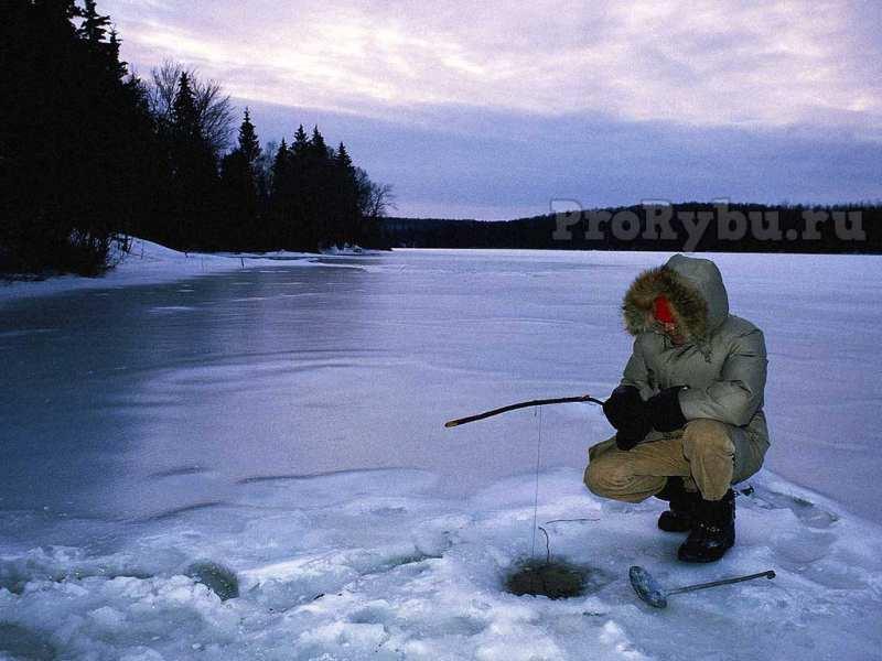 Рыболовные снасти для зимней рыбалки