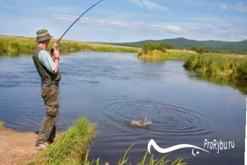 Костюмы для летней рыбалки