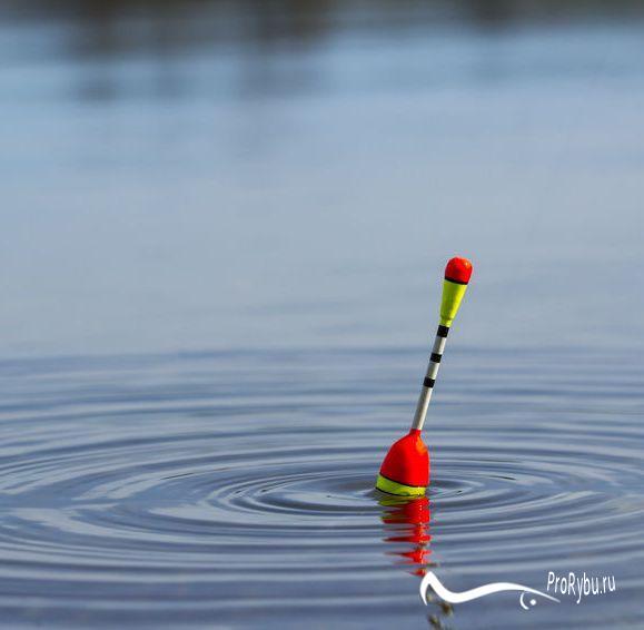 Лучшие поплавки для рыбалки на реке