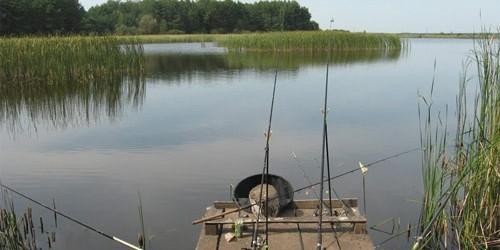 Фидерная рыбалка в Челябинске