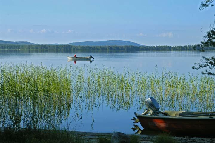 Перспективные места для бесплатной рыбалки в Свердловской области
