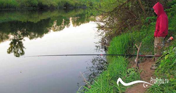 Снасти для ловли уклейки на поплавок