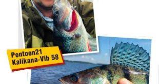Отзывы рыбаков о вибах от Pontoon 21