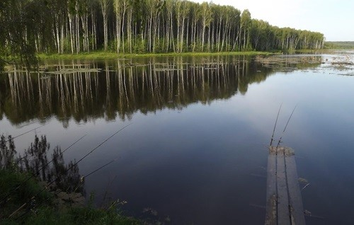 Рыбалка на озере в Орловской области