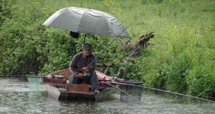 рыбалка в дождь