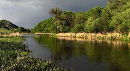 Рыбалка в Воронежской области