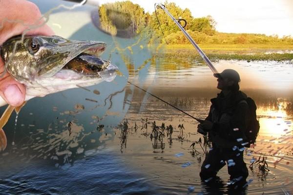 ветер для рыбалки