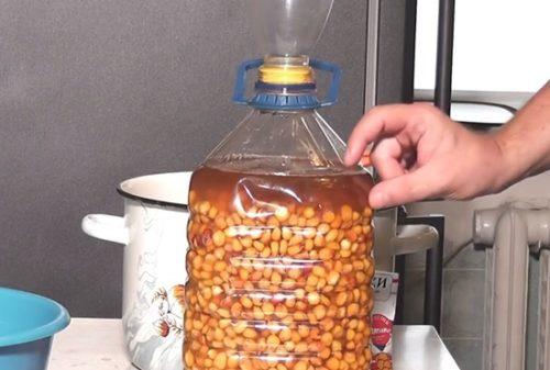 ферментированная кукуруза для карпа