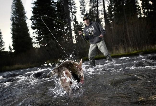 правила подсечки и вываживания рыбы