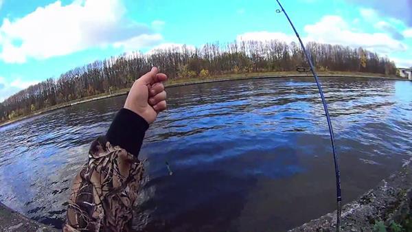 рыбалка на канале имени москвы на спиннинг