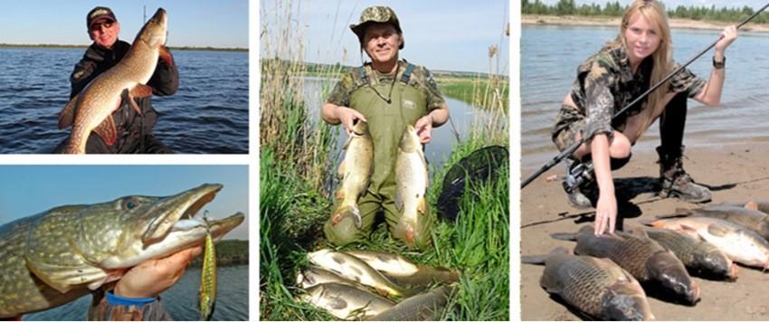 Фото рыбалка с DYNAMITE EFFECT