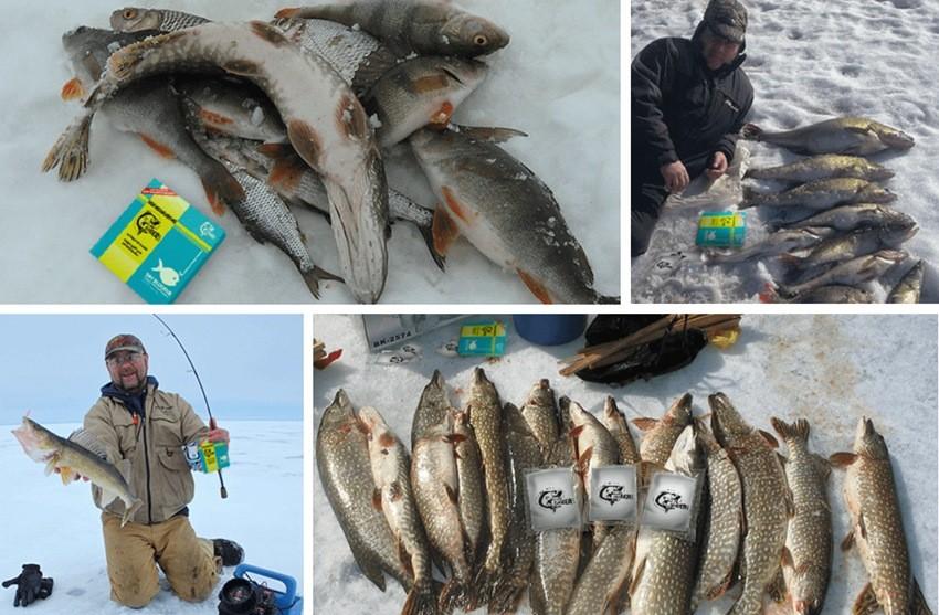 Фото рыбалка с Dry Blooder