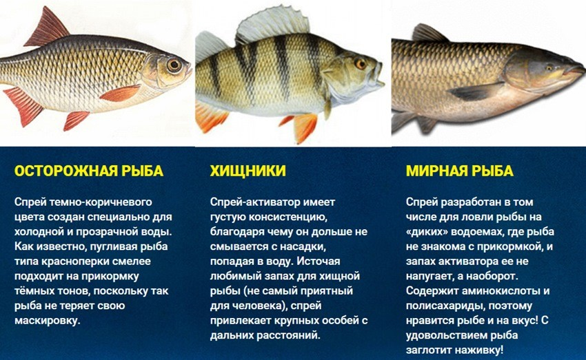 какая рыба клюет на спрей активатор клева