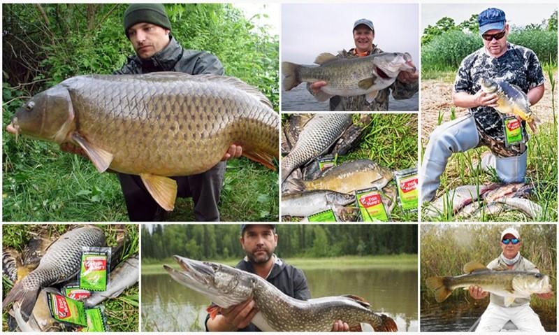 рыбалка с Fishhungry летом